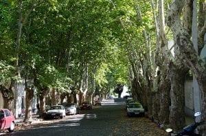 4.-Avenida-Gral-Flores