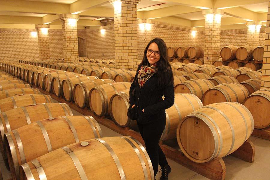 vinicola miolo vale dos vinhedos