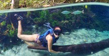 aquario encantado bom jardim MT