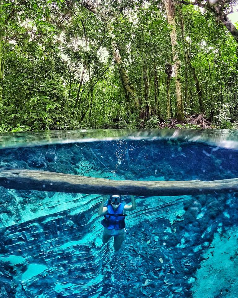 aquário encantado nobres