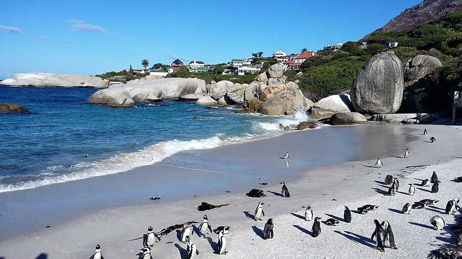 bolders beach