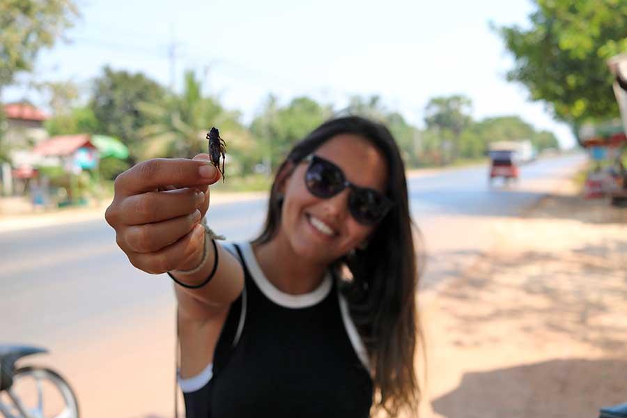 comer insetos camboja
