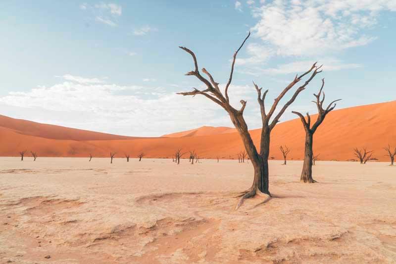 deadvlei namíbia