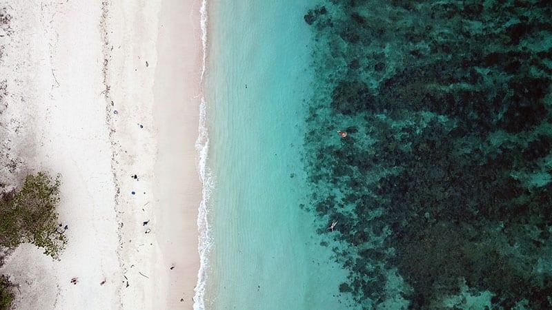 ilha komodo indonesia