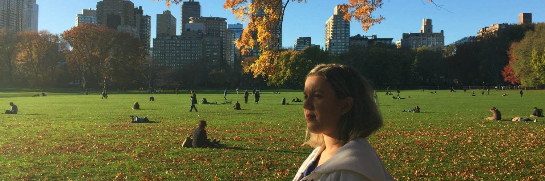 intercambio new york central park