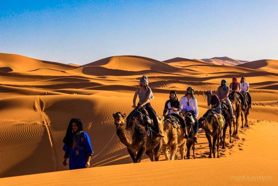 passeio dromedario marrocos