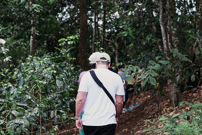 rota verde do cafe trilha sitio aguas finas