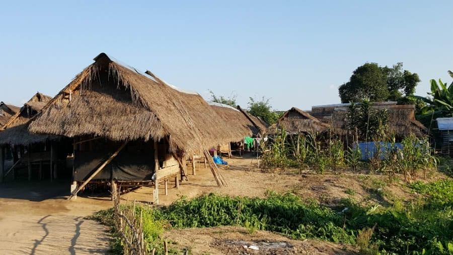 vilas mulheres girafa